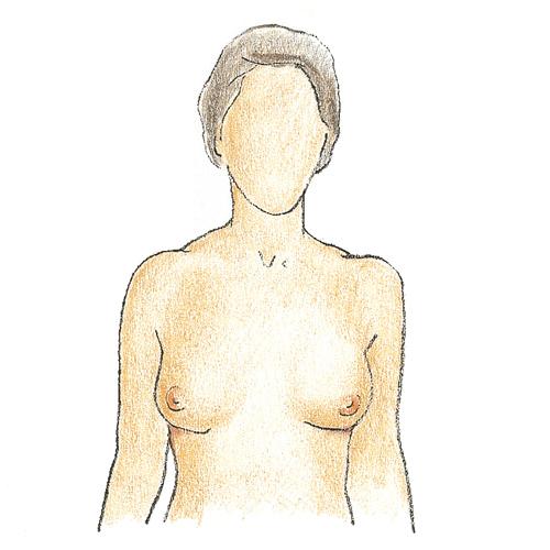 Der Badeanzug für die Frauen mit der kleinen Brust