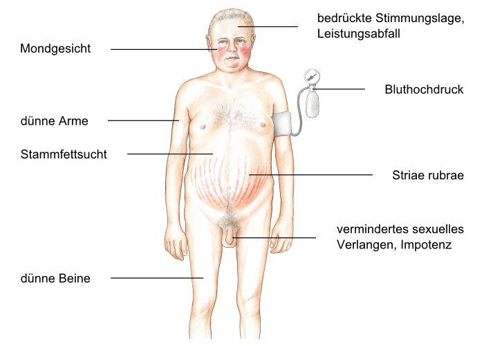 acth hormon: