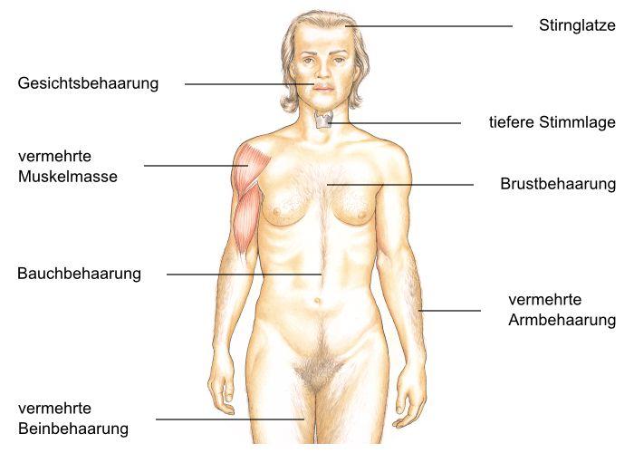 zu wenig testosteron symptome