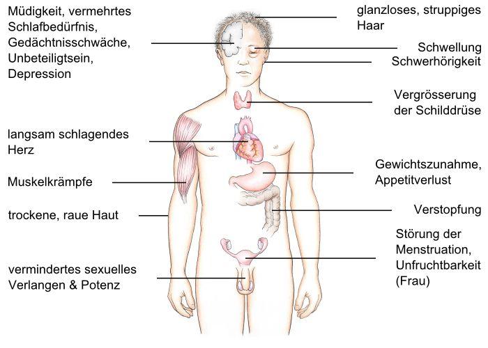 Symptome einer Schnecke in den menschlichen Körper